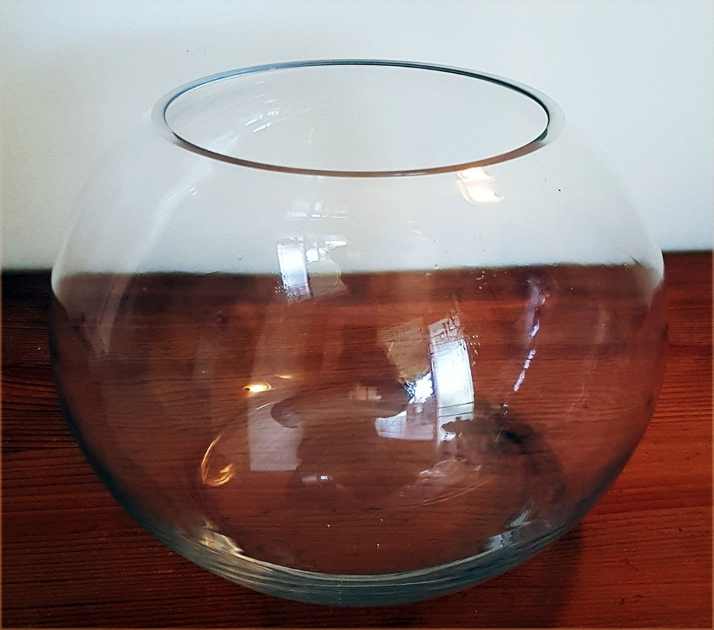 small fish bowl $3.25