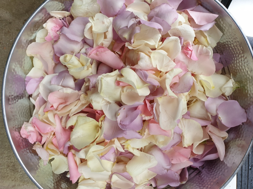 Mixed pastel rose petals